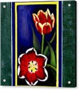 Sweetheart Tulips Acrylic Print