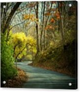 Swift Shoal Road Acrylic Print by Joyce Kimble Smith
