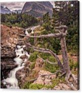 Swiftcurrent Lake Falls Acrylic Print