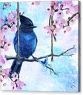 Swing Into Spring Acrylic Print