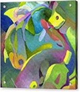 Swirling Fish Acrylic Print