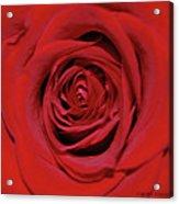 Swirling Red Silk Acrylic Print