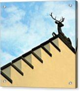 Swiss Deer On Zurich Rooftop Acrylic Print