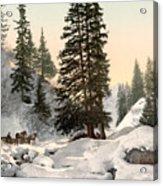 Switzerland: Davos, C1895 Acrylic Print