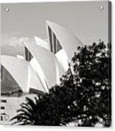 Sydney Opera House Black And White Acrylic Print