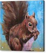 Sylas Saves For Winter Acrylic Print
