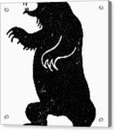 Symbol: Bear Acrylic Print