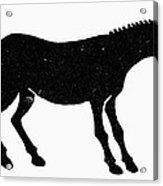 Symbol: Mule Acrylic Print