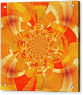 Symmetrical Abstract In Orange Acrylic Print