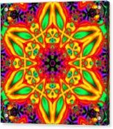 Synergy Acrylic Print