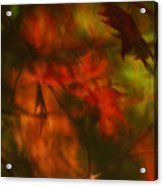 Synonymous Light Mourning A Dead Leaf Acrylic Print