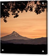 Mt. Hood At Sunset Acrylic Print