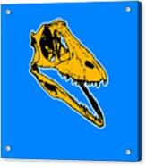 T-rex Graphic Acrylic Print by Pixel  Chimp