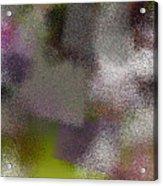 T.1.1003.63.5x3.5120x3072 Acrylic Print