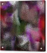 T.1.1006.63.5x7.3657x5120 Acrylic Print