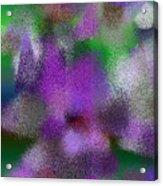 T.1.1240.78.3x4.3840x5120 Acrylic Print