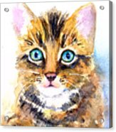 Tabby Kitten Watercolor Acrylic Print
