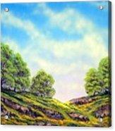 Table Mountain Acrylic Print