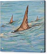 Tailin Bonefish Acrylic Print