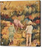 Taipei Buffalo Herder Acrylic Print