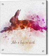 Take A Leap Of Faith Acrylic Print