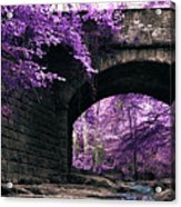 Take A Walk Acrylic Print