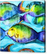 Take Care Of The Fish Acrylic Print