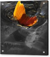 Tale Of The Wild Koi 3 Acrylic Print