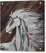 Tale Of The Wind Horse Acrylic Print