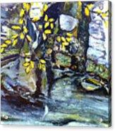 Talir Acrylic Print