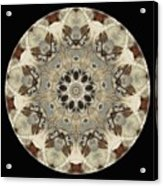 Talisman 2237 Acrylic Print