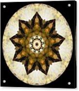 Talisman 2411 Acrylic Print