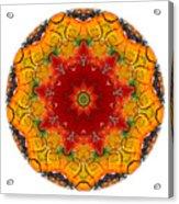 Talisman 2909 Acrylic Print