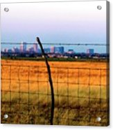 Tall City Morning Acrylic Print