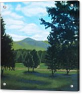 Tall Pines Surround Your Green Hills Acrylic Print