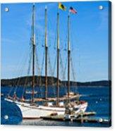 Tall Sailboat In Acadia Acrylic Print