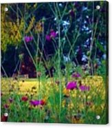 Tall Wisphy Flowers Of Pink Acrylic Print