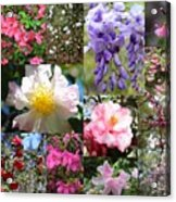 Tallahassee Springtime Collage Acrylic Print