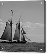 Tallship Acrylic Print