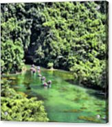 Tam Coc Boats On Ngo Dong River  Acrylic Print