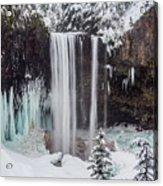 Tamanawas Falls 1 Acrylic Print