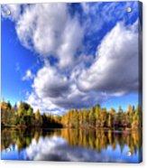 Tamarack Reflections In The Adirondacks Acrylic Print
