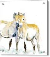 Tan Horses Acrylic Print