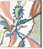 Tangle Acrylic Print