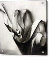 Tangled In Light Acrylic Print