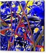 Tangled Web Acrylic Print