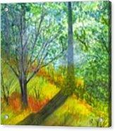 Tannis Woods Acrylic Print
