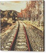 Tasmanian Country Tracks Acrylic Print