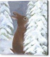 Tasting Winter Acrylic Print