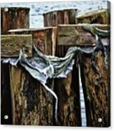 Tattered And Torn Acrylic Print